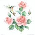 Carolyn Shores-Wright - Anna's Hummingbird with Roses I